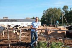 De landbouwer werkt aan landbouwbedrijf met melkkoeien Stock Afbeeldingen