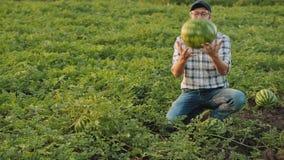 De landbouwer werpt op een gekweekte watermeloen stock footage