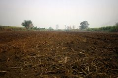 De landbouwers bereiden de grond voor het planten voor royalty-vrije stock afbeelding