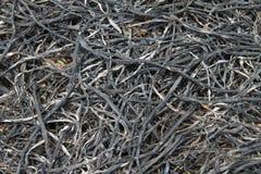 de landbouwers branden opzettelijk van hun Rijststoppelvelden op de volgende cyclus voor te bereiden Royalty-vrije Stock Foto's