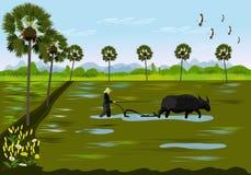 De landbouwers graven de grond gebruikend buffels in padievelden Met palmen als achtergrond stock illustratie