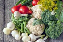 De landbouwers oogsten verschillende groenten in de recente zomer in de organische tuin Gezond, duurzaam voedsel De herfst Stock Foto