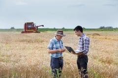 De landbouwers op tarwe oogsten Royalty-vrije Stock Fotografie