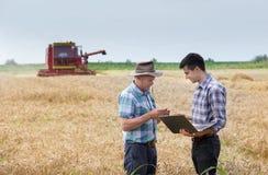 De landbouwers op tarwe oogsten Royalty-vrije Stock Foto