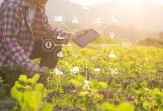 De landbouwersmens die van de landbouwtechnologie tabletcomputer met behulp van stock foto's