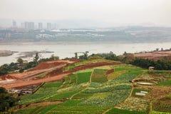 De landbouwgebied door de Yangtze-rivier in Chongqing royalty-vrije stock foto