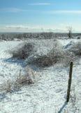 De landbouwgrond van de winter Stock Fotografie