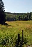 De Landbouwgrond van het land in Luxemburg royalty-vrije stock fotografie