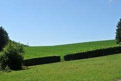 De Landbouwgrond van het land in Luxemburg stock afbeeldingen
