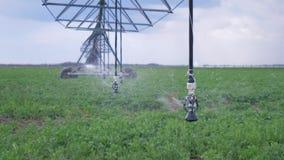 De landbouwindustrie, geautomatiseerd irrigatiesysteem dat aan waterplanten op gebied wordt gebruikt stock video