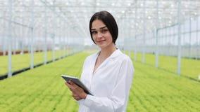 De landbouwingenieur in serre die witte laag dragen die ot tablet computer om broek` s gezondheid te testen en gegevens te analys stock videobeelden