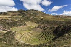 De landbouwterrassen van Incan in Moray peru stock afbeelding