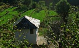 De landelijke organische landbouw van Himachal n en de hut van de plattelandshuisjearchitectuur in ver Himalayan-gebied Stock Foto's