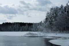 De landelijke Scène van de Winter Stock Afbeeldingen