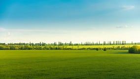 De landelijke tijdspanne van de landschapstijd met het groene gebied stock videobeelden