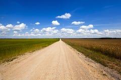 De landelijke weg stock afbeeldingen
