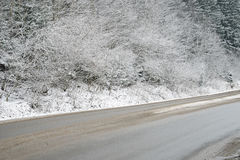 De landelijke weg van de winter Stock Fotografie