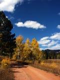 De landelijke weg van het land met de herfst Stock Foto