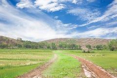 De landelijke weg van het landschapsdorp Royalty-vrije Stock Fotografie