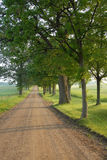 De landelijke zuidelijke weg van Michigan Royalty-vrije Stock Foto