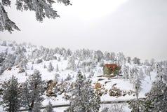 De Landschappen van de winter Stock Foto's