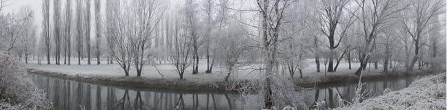 De Landschappen van de winter Stock Afbeeldingen