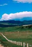De landschappen van het weiland Royalty-vrije Stock Foto