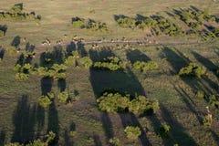 De landschappen van Kenia Stock Afbeeldingen
