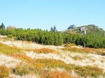 De landschappen van Polen van Karkonosze-Bergen stock foto