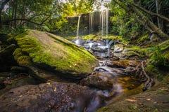 De landschapsfoto, mooie regenwoudwaterval in diep bos bij het Nationale Park van Phu Kradueng Stock Afbeeldingen