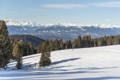 De landschapssneeuw overal is wit Stock Afbeelding