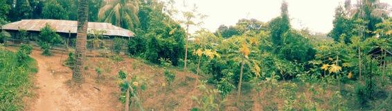De landstreek van de Rangamatiheuvel Stock Fotografie