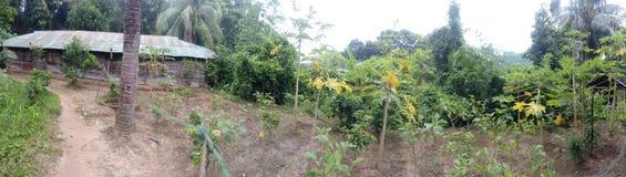 De landstreek van de Rangamatiheuvel Royalty-vrije Stock Afbeelding