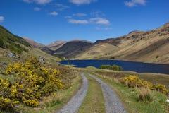 De landweg leidt tot forestless heuvels en intensief blauw meer, Schotland royalty-vrije stock afbeeldingen