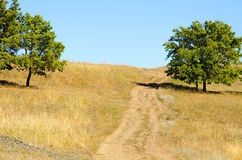 De landweg omhoog de heuvel Royalty-vrije Stock Foto