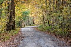De landweg van de herfst Stock Foto's