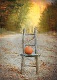 De Landweg van de herfst Stock Foto
