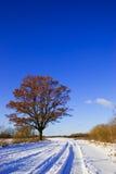 De landweg van de winter stock afbeelding