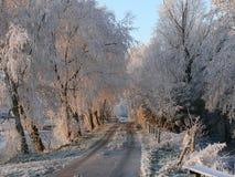 de landweg vinter Arkivfoto