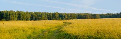De landweg XXL van het gebied royalty-vrije stock foto