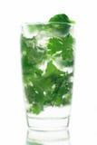 De lange drank van Mojito Stock Afbeeldingen