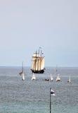 De lange Regatta 2010 van Schepen - het schip Oosterschelde Royalty-vrije Stock Afbeeldingen