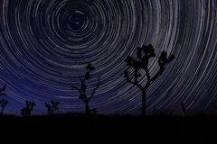 De lange Slepen van de Blootstellingsster in Joshua Tree National Park Stock Afbeeldingen