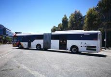 De lange witte Metro bus is hoge frequentie, het netwerk van de hoge capaciteitsbus in Adelaide royalty-vrije stock afbeeldingen