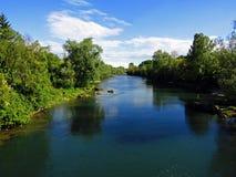 De langste Adda-rivier met sommige grote vissen stock afbeeldingen