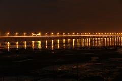 De langste brug van de wereld - de brug van de hangzhoubaai, door het moerasland van hangzhoubaai Stock Fotografie