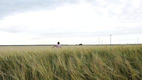 De langzame Looppas van Motie Gelukkige Little Boy weg over een Tarwegebied stock video