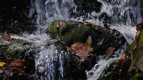 De langzame motie van het watervaldetail stock video