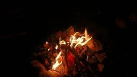 De langzame motie van kampvuurvlammen stock footage