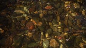 De langzame Pool van de Motie Ondiepe Rots stock video